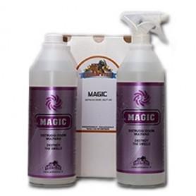 MAGIC 2L