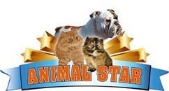 AnimalStar di Stefania Riccioni
